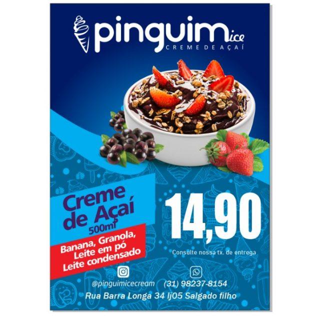Pinguim ice Creme de Açaí